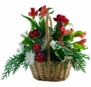 Christmas Flower Basket - large